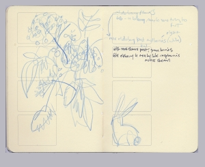 Image from Matt Best's foraging sketchbook, with elderberry tally and rabbit.
